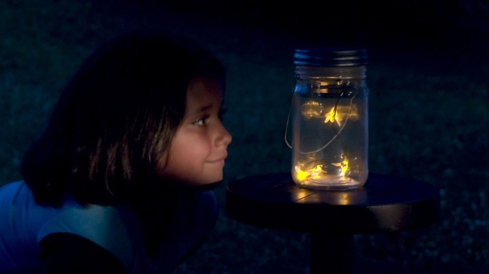 fireflies girl